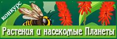 """Международный творческий конкурс """"Растения и насекомые Планеты"""""""