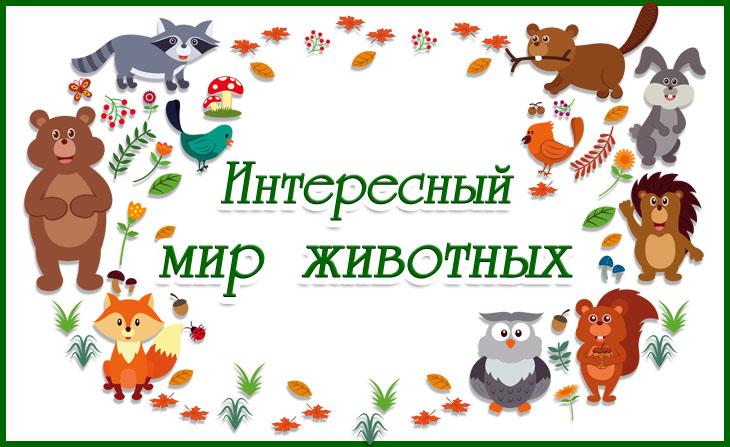 Всероссийские творческие конкурсы для детей и педагогов